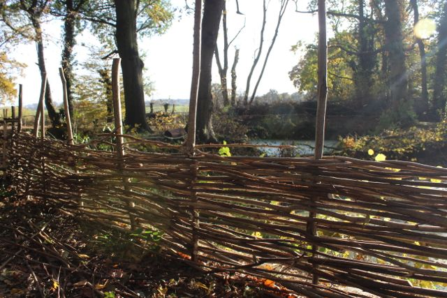 Kaliwood Pond Fence-17