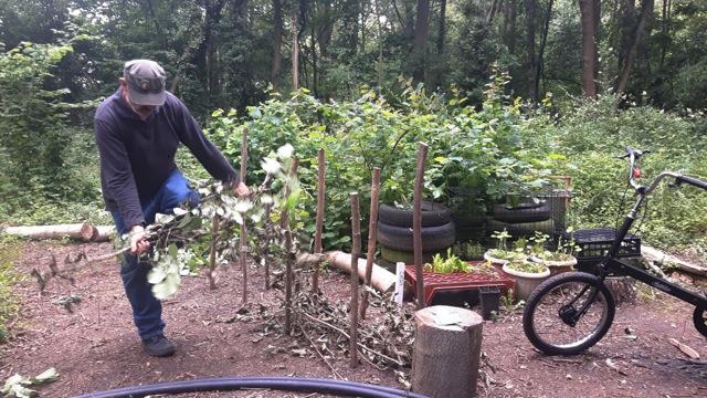 KFS June 26 Dead Hedge
